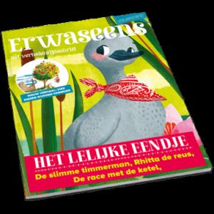 tijdschrift-3-het-lelijke-eendje